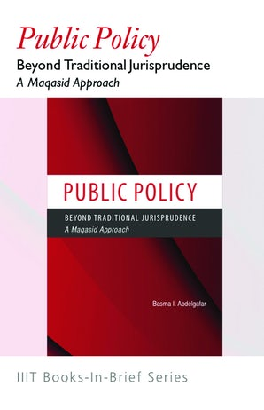 Public Policy Beyond Traditional Jurisprudence (Book-In-Brief)