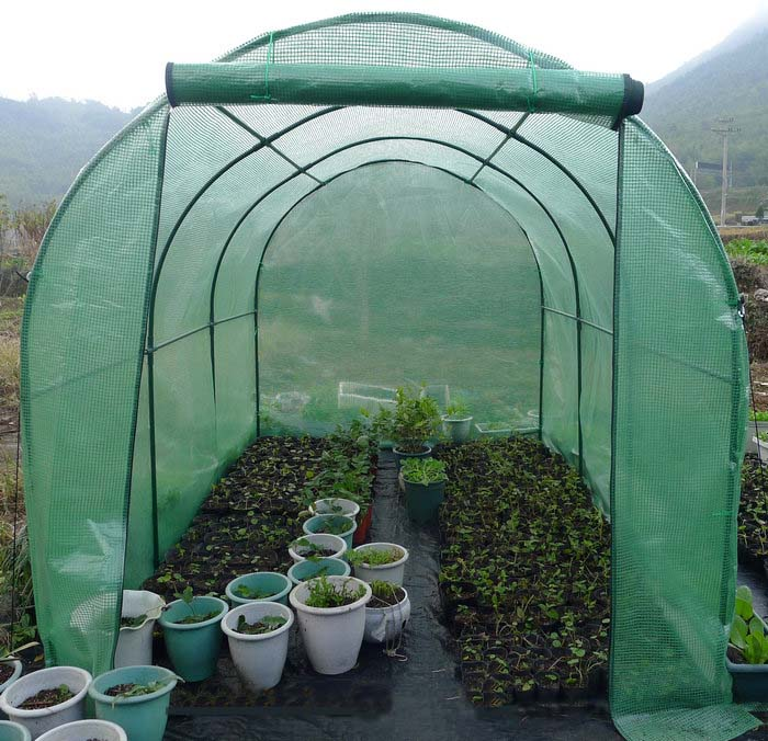Large Pop Up Clear Greenhouse Cover For Cold Frost Protector