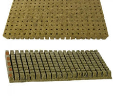 "(100pcs/pack)  1"" Starter Plugs Cubes - Rockwool grow media."