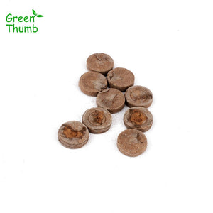 20pcs Nursery Block Peat Pellets for Garden Flowers Planting Green Thumb Seedling Soil Block for Seedling Cultivation