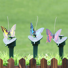 Beautiful Solar Butterfly And Hummingbirds with Artificial Fluttering and Flying Simulation Garden Decoration