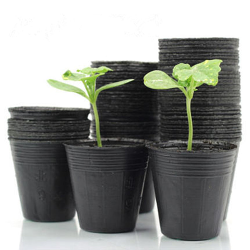 100 pcs light black nursery pots garden accessories