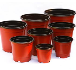 100 PCS Double Color Plastic Garden Flowerpot