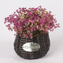 Woven Rattan Wicker Storage Basket/ Flower Plant Pot for Garden Planting Nursery and Bonsai