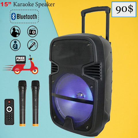 Feiyang 15 Inch Power Speaker