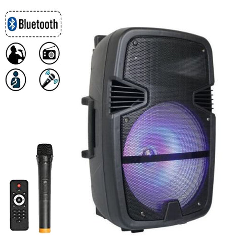 Feiyang 8 Inch Power Speaker