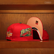 MARVIN THE MARTIAN TRUCKER STRIPE CHARACTER ELEMENTS NEW ERA SNAPBACK