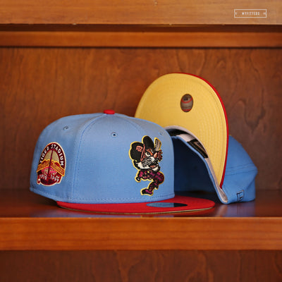 "DETROIT TIGERS ""ROALD DAHL FANTASTIC MR. FOX INSPIRED"" NEW ERA FITTED CAP"
