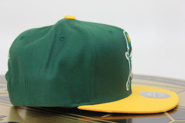 GREEN BAY PACKERS MITCHELL & NESS ADJUSTABLE FIT SNAPBACK HAT