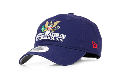 USA UNITED STATES OF AMERICA CENTER TRIBUTE AMERICANA NEW ERA DAD HAT