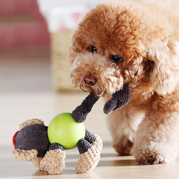 Funny Animal Shape Dog Toy   - Luxtrak