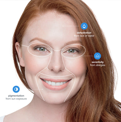 face mapping skin analysis