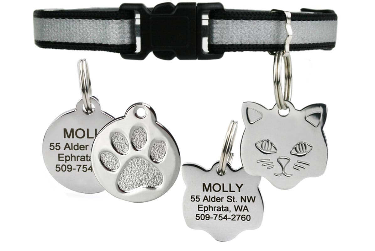 GoTags Breakaway Reflective Black Cat Collar with Personalized ID Tag Engraved