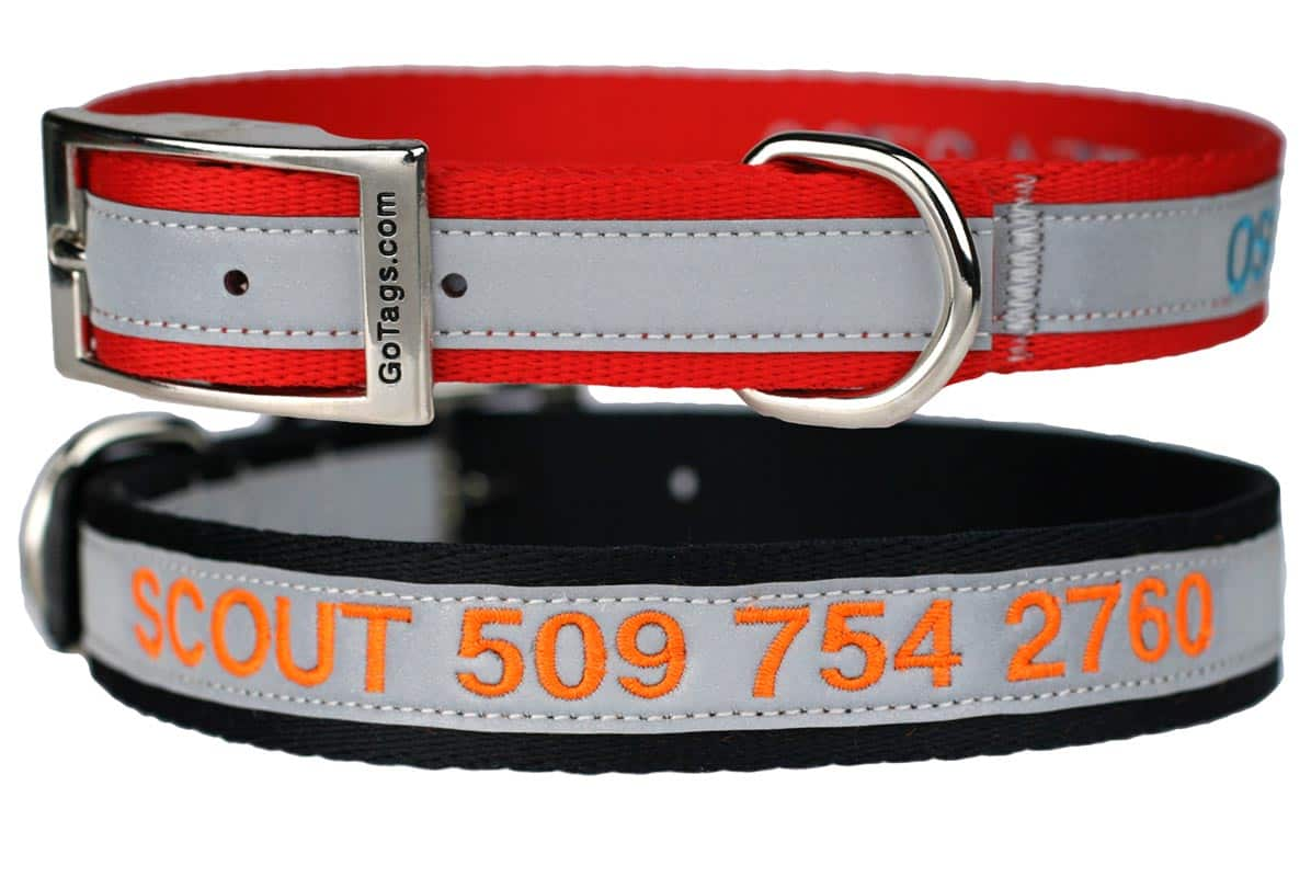GoTags Personalized Metal Buckle Dog Collars Embroidered with Name and Phone Number