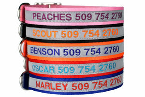 GoTags Personalized Reflective Dog Collars Embroidered with Name and Phone, Metal Buckle