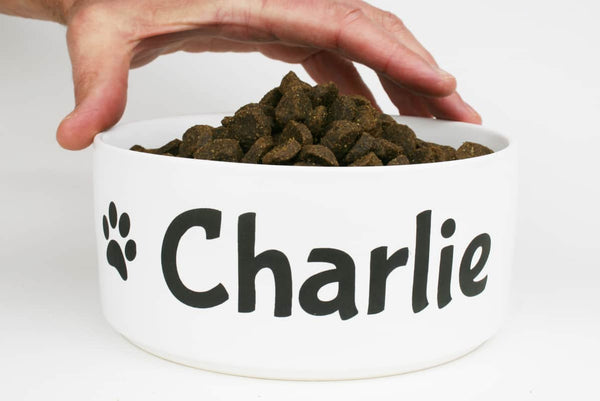 GoTags Personalized Dog Bowl with Name, Custom Ceramic Dog Food Dish