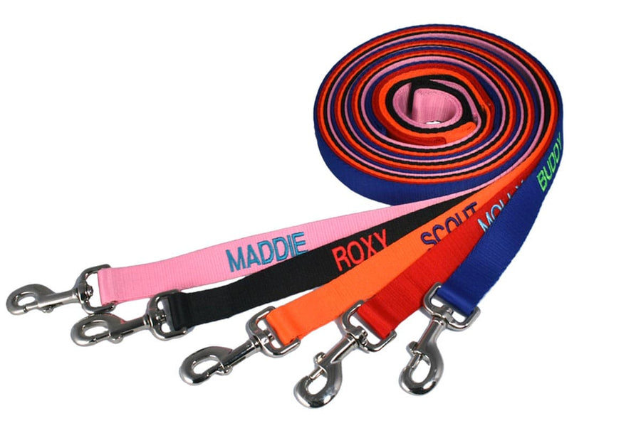 GoTags Personalized Dog Leash