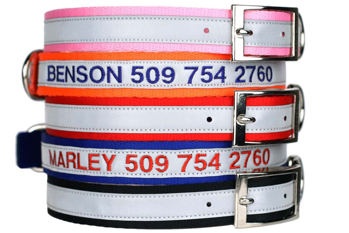 GoTags Personalized Embroidered Reflective Dog Collar with Metal Buckle