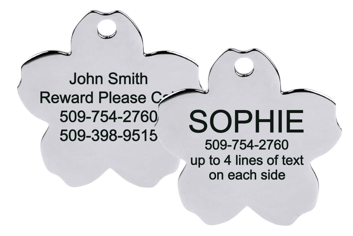 GoTags Flower Shape Stainless Steel Pet ID Tag