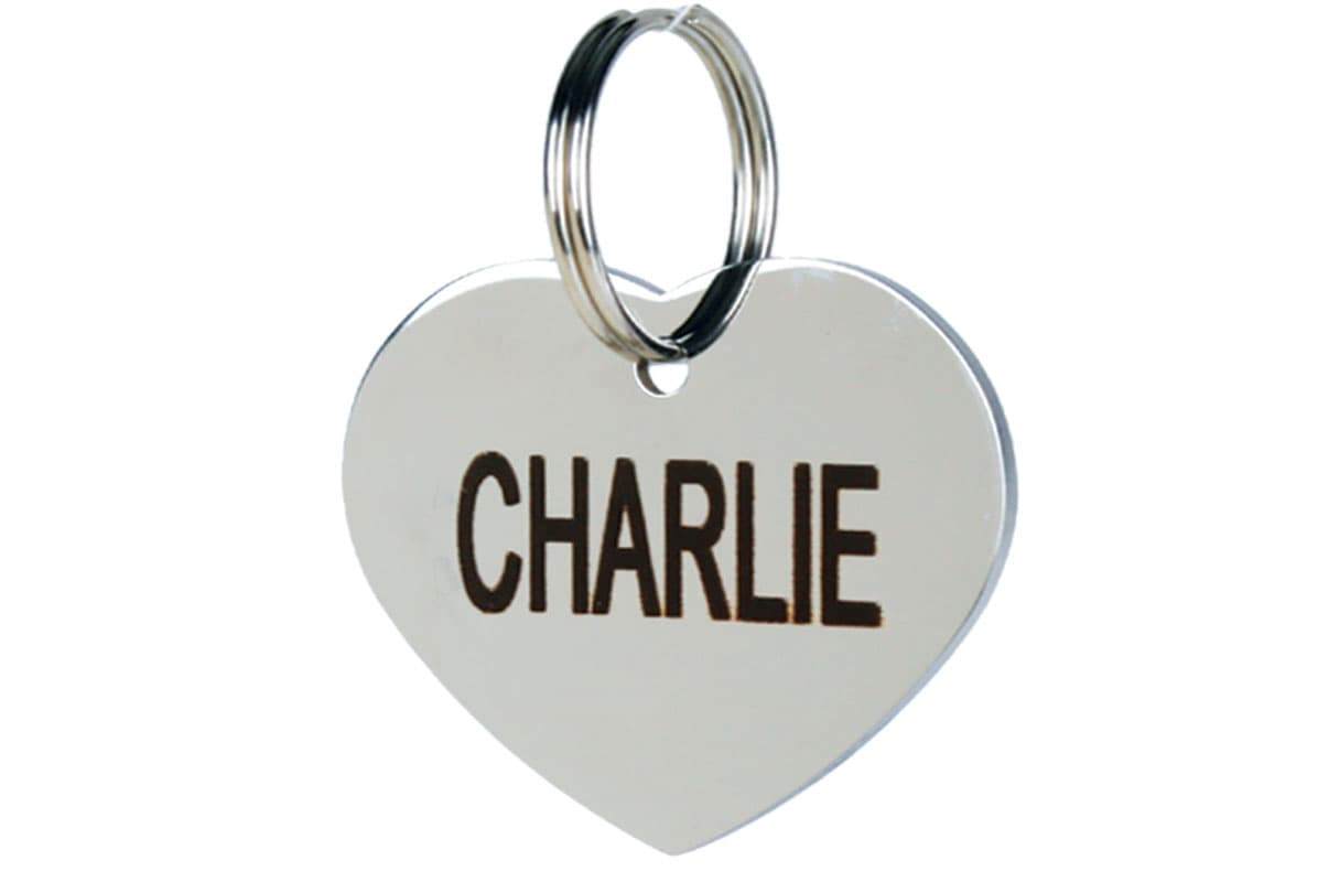 GoTags Heart Shape Stainless Steel Pet ID Tag