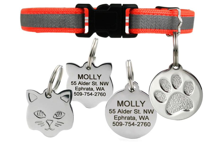 GoTags Breakaway Orange Reflective Cat Collar with Tag Stainless Steel Personalized Engraved