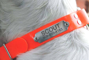 GoTags Waterproof Orange Hunting Dog Collar with Stainless Steel Rivet on Nameplate ID Tag Personalized Engraved