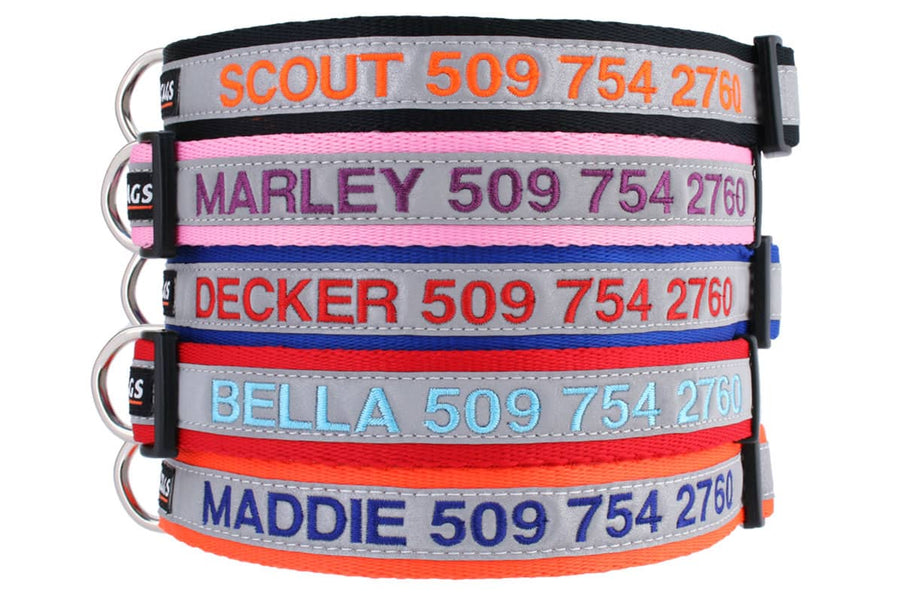 Personalized Embroidered Reflective Dog Collar with Quick Release Buckle