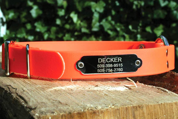 GoTags Personalized Waterproof Orange Hunting Dog Collars with Rivet on Nameplate ID Tag Engraved