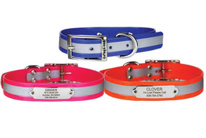 GoTags Orange, Blue and Pink Reflective Waterproof Dog Collar with Personalized Stainless Steel Nameplate ID Tag with Rivets