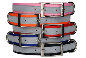 Reflective Dog Collar with Metal Buckle