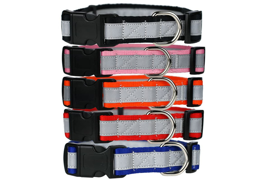 GoTags Nylon Reflective Dog Collar with Quick Release Snap Buckle