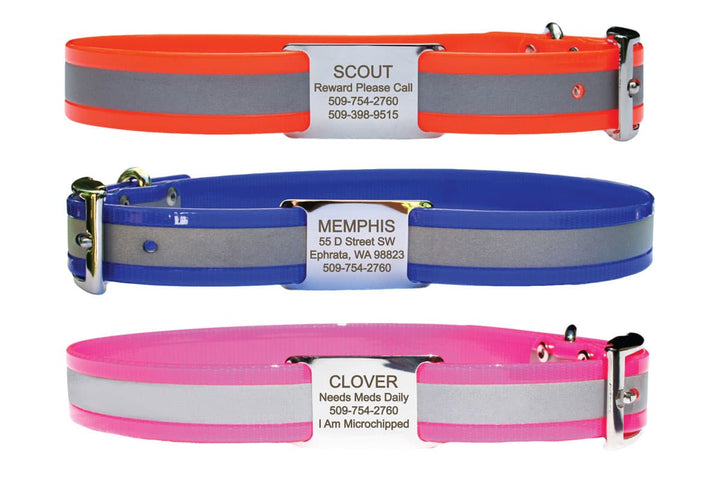 GoTags Personalized Waterproof Dog Collars with Slide-on Stainless Steel Nameplate ID Tag, Reflective BioThane Dog Collars