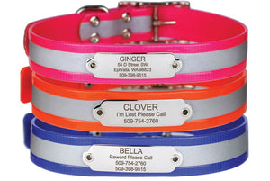 GoTags Reflective Waterproof Dog Collar with Nameplate, Personalized Stainless Steel Name Plate ID Engraved on Pink, Orange or Blue Dog Collar