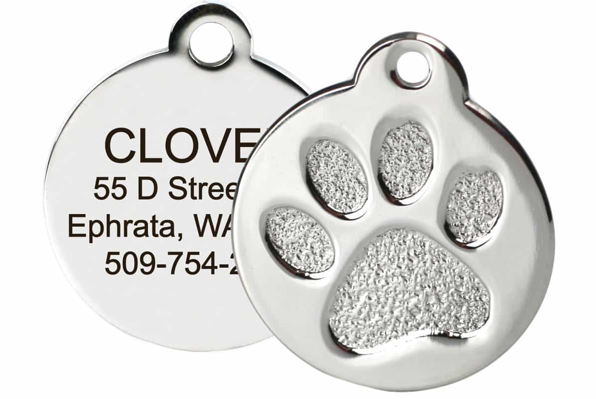 GoTags Paw Print Stainless Steel Pet ID Tag
