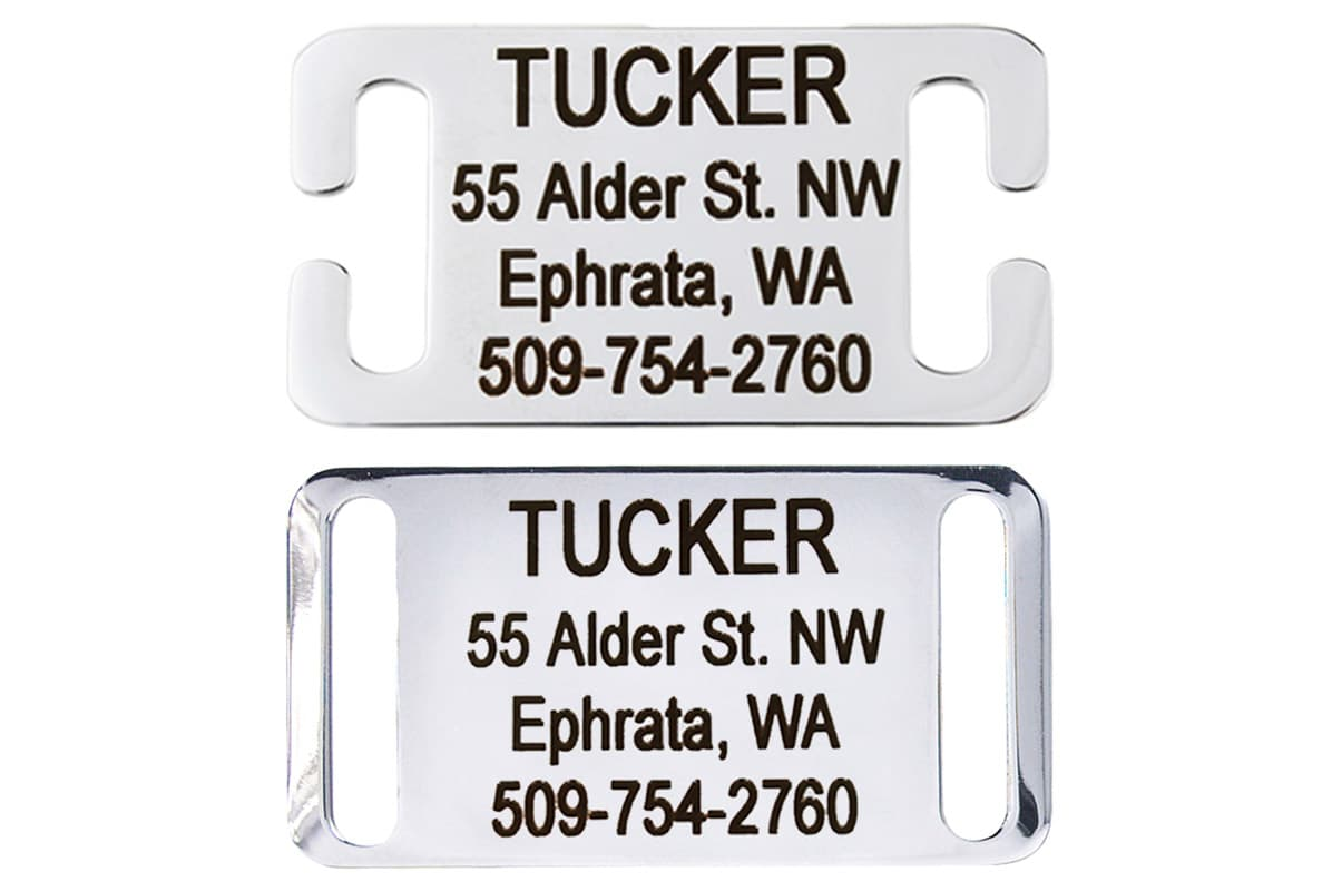 GoTags Stainless Steel Slide-on Dog Collar ID Tag Nameplate with Name and Phone Number