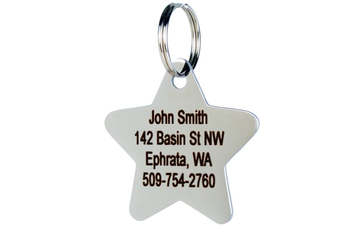 GoTags Star Shape Stainless Steel Pet ID Tag