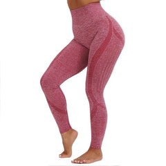 Europe and America seamless Pants knitting absorption wicking Exercise Fitness  legging women Wild Europe and America - Slabiti