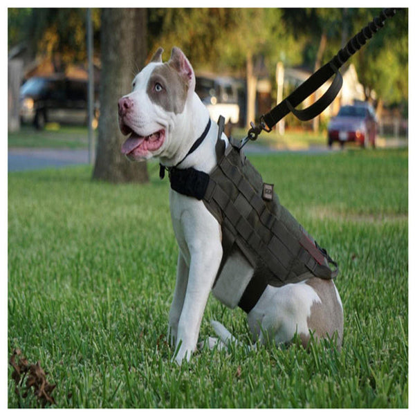 Army Tactical Dog Vest Hunting Dog Training Molle Vest Outdoor Military Dog Clothes - Slabiti
