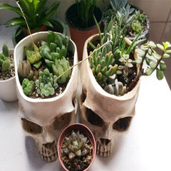 Animal Skull Resin Flower Pot Handmade Sculpture Model 1:1 Ashtray Ghost Festival Potted Fruit Bowl Storage Tank Family Decorati - Slabiti