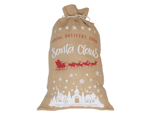 Special Delivery From Santa Claus Santa Bag / Sack
