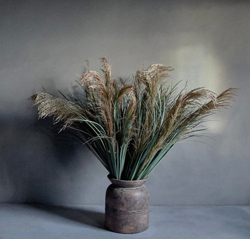 Pampas grass stems by Abigail Ahern