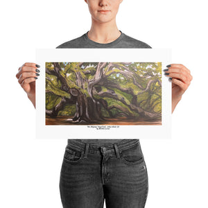 "Poster Print ""Her Majesty"" Angel Oak- Johns Island, SC Charleston Souvenirs - Michele Levani Studio"