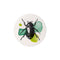 sticker set Mitte beetle