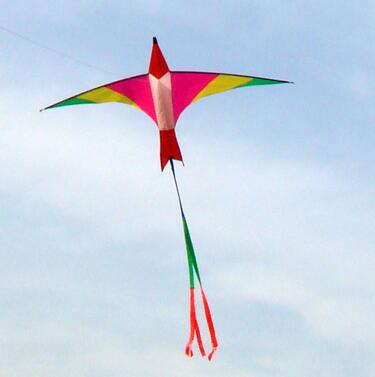 high quality 3m Swiss firebird kites easy control with handle line flying bird toy kite hand children kite
