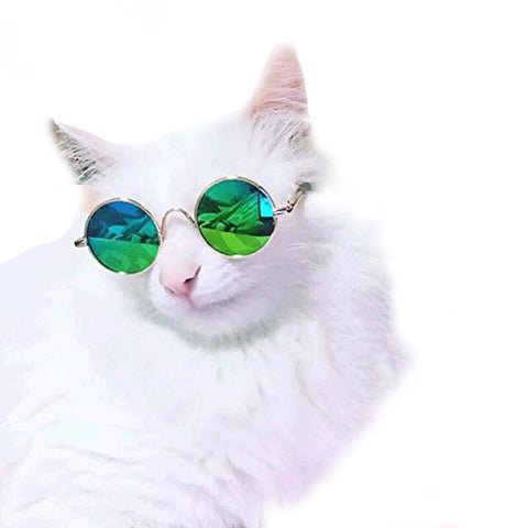 Pet Prop Sunglasses