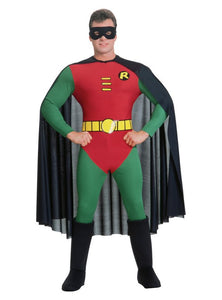 Fancy Dress Costume - Small/Medium