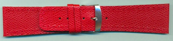 DF100BIG watchband