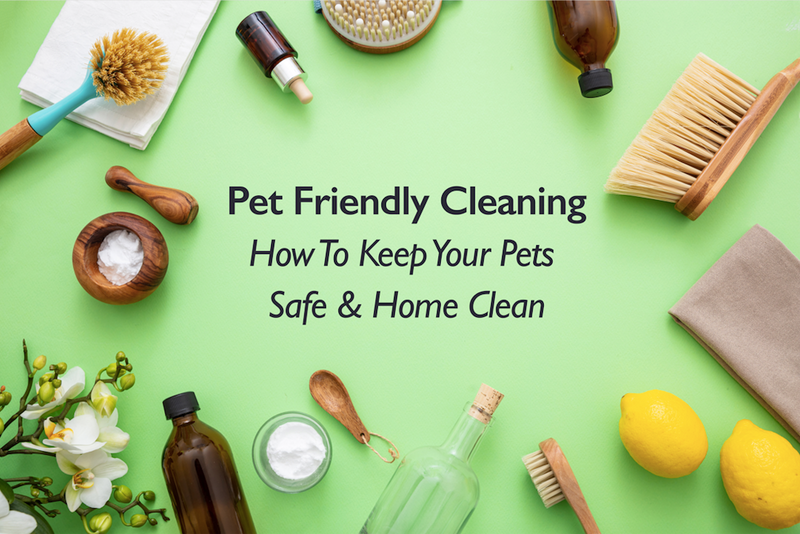 Pet-Friendly Cleaning: How to Keep Your Pets Safe and Your Home Clean