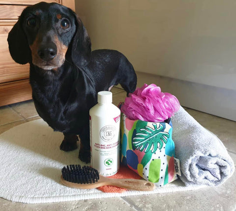 cooper and gracie itchy skin shampoo