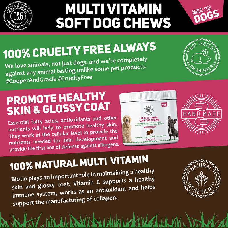 Multivitamin All in One Supplement for Dogs 60 Soft Chews (4597998157879)